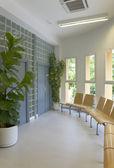 Modernes interieur mit pflanzen und windows — Stockfoto