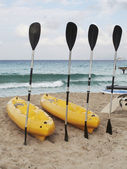Paddles and kayaks on the beach — Stock Photo
