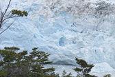 Patagonian landscape with glacier. Perito Moreno. Argentina — Stock Photo