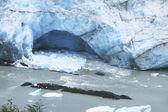 Perito Moreno glacier tongue. Argentina. South america — Stock Photo
