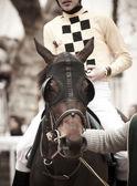 Race horse and jockey ready to run — Stock Photo