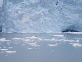 Perito Moreno glacier. Argentina. South America — Foto de Stock