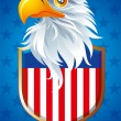 Symbol of USA — Stock Vector #19147677