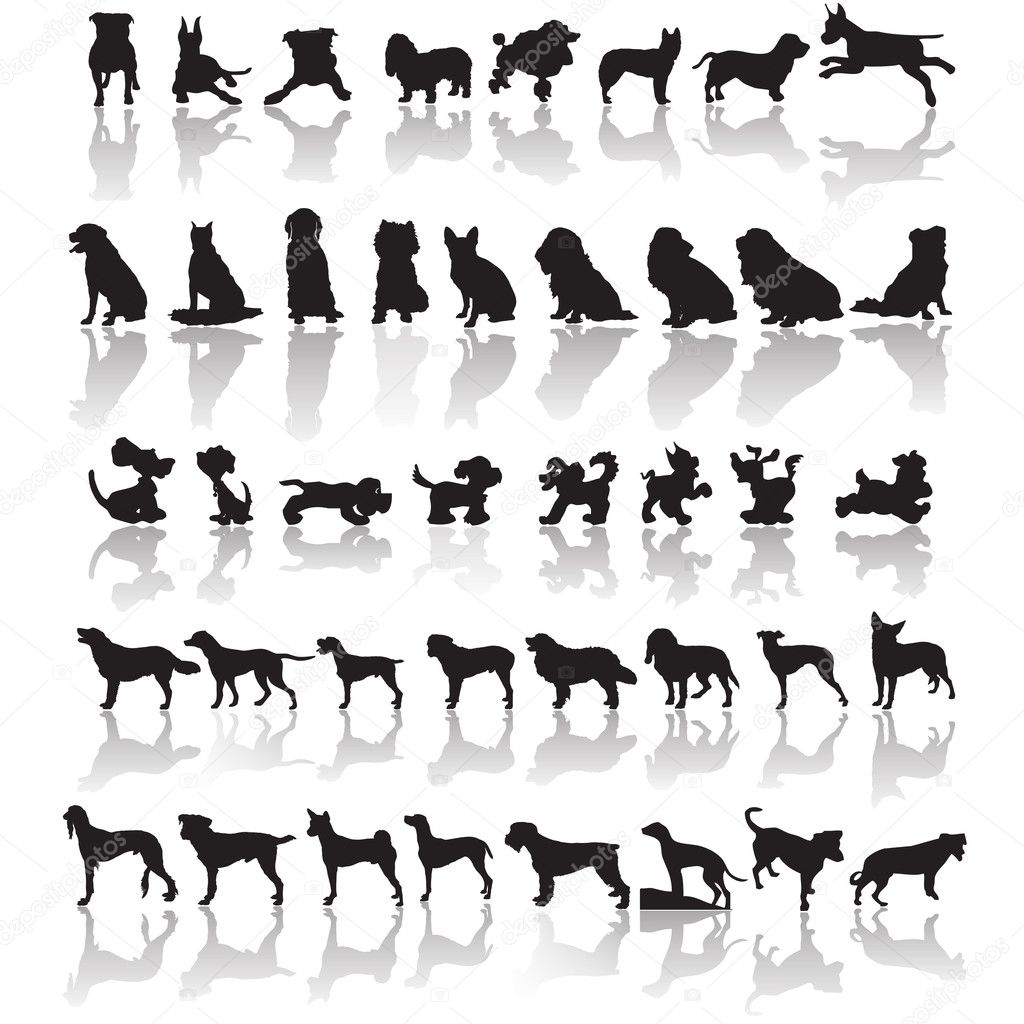 Forty one dog silhouettes with a shadow  Stock Vector #18194517