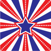USA Sunburst — Stockvector