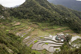 Rice Terraces in Bataad Philippines — Stock Photo