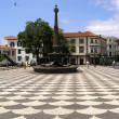 Vity plaza at Madeira, Funchal — Stock Photo