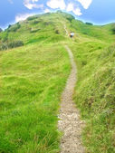 La ruta de acceso — Foto de Stock