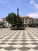 Vity plaza at Madeira, Funchal — Stock Photo