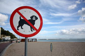 Dogs not allowed — Stock Photo