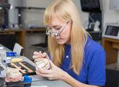 Dental lab technician applying porcelain to dentition mold — Stock Photo