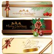 Christmas banner set — Stock Vector
