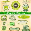 Set of organic labels — Stock Vector #26852915