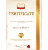 šablona certifikátu — Stock vektor