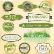 Set of organic labels set — Stock Vector