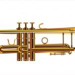 Trumpet — Stock Vector #28501613