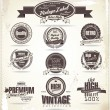 Vintage Styled Premium Quality Label collection  — Stock Vector