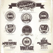 Vintage Styled Premium Quality Label collection — Imagen vectorial