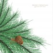 Pine cones with branc — Vector de stock