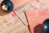 Chinese visas — Stock Photo