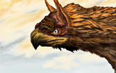 Head of a mythic beast gryphon — Stock Photo
