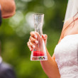 Bride holding vase - Stock Photo
