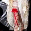 Red garter - Stock Photo