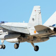 Stock Photo: BOEING F-18