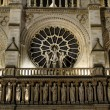 Detail of facade of Notre Dame of Paris — Stock Photo #18027625