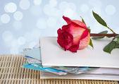 Photo album and rose — Stock Photo