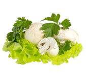 Lettuce with champignon and parsley — Стоковое фото