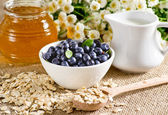 Blueberries in the bowl, oatmeal, honey and milk jug — Stock Photo