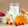 Honey, milk, raspberries and daisies — Stock Photo