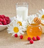 Honey, milk, raspberries and daisies — Stock Photo