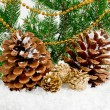 Stock Photo: Christmas background with pine cones