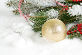 Christmas background with shiny ball on the snow and fir branch — Stock Photo