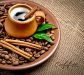 Coffee beans in ceramic plate with spices — Stock Photo