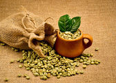 Green coffee beans — Stock Photo
