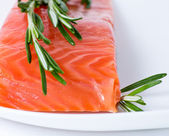 Salmon served with rosemary — Stock Photo