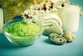 Spa salon design with sea salt and shell. — Foto de Stock