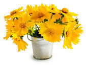 Bouquet of yellow flowers in a small pail — Stock Photo