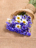 Bouquet of daisies and cornflowers — Stock Photo