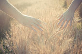 Walking in the field of wheat — Stock Photo