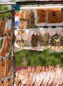Kalmary — Zdjęcie stockowe