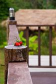 Rustic porch — Stock Photo