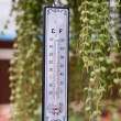 Stock Photo: Thermometer
