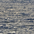 Stock Photo: Ice and frozen sea water covered in snow