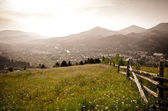 The view from the mountains meadow to the village — Stock Photo