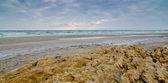 Mar de invierno — Foto de Stock