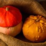 Unusual yellow pumpkin, orange hat pumpkin and small watermelon — Stock Photo